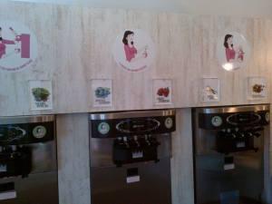 6 parfums de yaourt glacé aux choix (manque le nature tout à gauche)